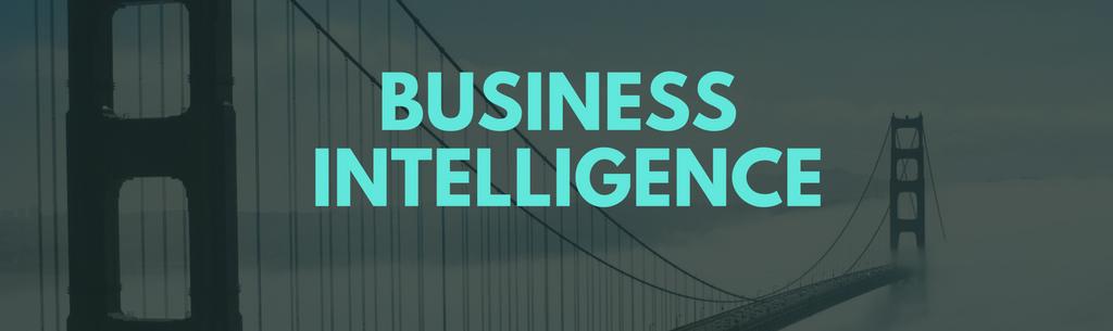 ERP Business Intelligence_Web